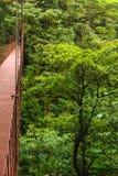 Suspension bridge, Monteverde Reserve, Costa Rica Royalty Free Stock Photography