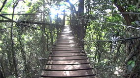 Suspension Bridge 1. Moving shot on a suspension bridge high off the ground in a rainforest stock video