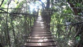 Suspension Bridge 1 stock video