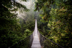 Suspension Bridge, North Vancouver, Canada. This image shows a Suspension Bridge in North Vancouver, Canada Royalty Free Stock Photography