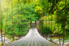 Suspension bridge over the canal to nature Stock Photography