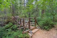 Suspension Bridge Over Falls Creek. In Gifford Pinchot National Forest Hiking Trail in Washington State Royalty Free Stock Image