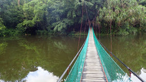 The suspension bridge over the lake at Rainforest Discovery Centre In Sepilok, Borneo Royalty Free Stock Photo