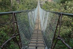 Suspension bridge over part of Oribi Gorge Canyon. View of sturdy suspension bridge spanning part of Oribi Gorge canyon in Kwazulu Natal in summer Stock Images