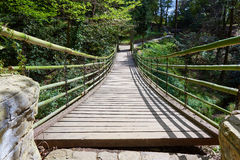 Suspension bridge in park arboretum Sochi Stock Photos