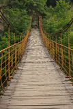 Suspension bridge in Qinling mountains Stock Image
