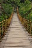Suspension bridge in Qinling mountains. China Stock Image