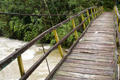 Suspension bridge in rainforest. Pedestrian suspension bridge over river in rainforest stock images