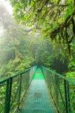 Suspension bridge in rainforest Royalty Free Stock Photo