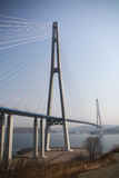 Suspension bridge on Russian island in Vladivostok Stock Photography