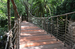 Suspension Bridge. A small sturdy suspension bridge with wooden walking surface, suspended from knotted rope. Forest setting Stock Photography