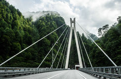 Suspension bridge  in Sochi. Suspension bridge in the hills Royalty Free Stock Photos