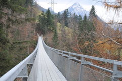 Suspension Bridge Spissibach Leissigen Stock Photos