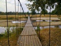 Suspension bridge. In the summer Royalty Free Stock Photos