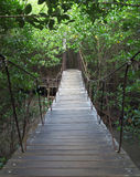 Suspension bridge to forest. Stock Photos