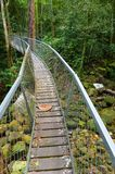 Suspension bridge walkway, Borneo rainforest Stock Photo