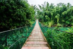 Suspension bridge stock image