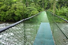 Suspension foot bridges allow viewing the biodiversity of in Tirimbina Biological Reserve in Costa Rica from above. stock photos