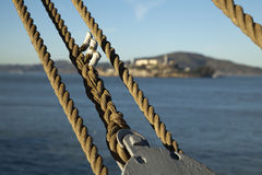 Suspension Ropes Stock Image