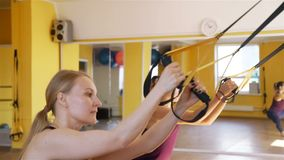 Suspension training with fitness straps. Women having suspension training with TRX fitness straps in a gym in slow motion. Healthy style concept stock video