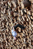 Suspension workout on the large pile of cut wooden Royalty Free Stock Image