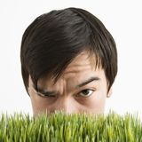 Suspicious man behind grass. Royalty Free Stock Images