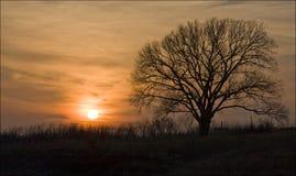 Susset di Illinois Fotografia Stock