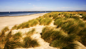Sussex. West wittering beach sussex england royalty free stock photography