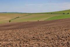 Sussex-Ackerland im Frühjahr Lizenzfreie Stockfotografie