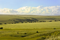 South  Downs Sussex Royalty Free Stock Photos