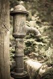 Sussex-Englisch-Landschaft Stockbilder