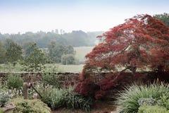 Sussex-Englisch-Landschaft Stockbild