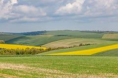 Sussex patchworklandskap Arkivfoton