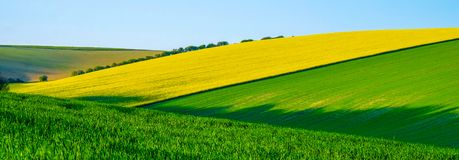 Sussex rolling hills with patterns and colours of crops growing in the big fields royalty free stock photo