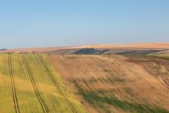 Sussex-Sommer-Landschaft Stockbild