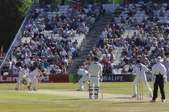 Sussex v Australia cricket tour match Royalty Free Stock Images