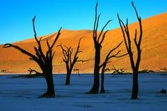 Sussusvlei Deadvlei - la Namibie Photo libre de droits