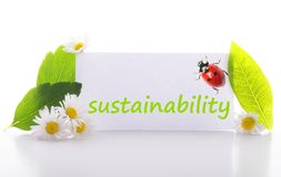 Sustainability. Concept with word on nature still life Royalty Free Stock Photos