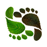 Sustainability of ecology against environmental pollution. Concept of carbon footprint Royalty Free Stock Photos