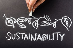 Sustainability. Hand drawing leaves over Sustainability word topic Stock Photos