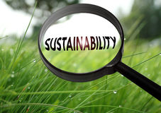 Sustainability. Magnifying glass with the word sustainability on grass background. Selective focus Stock Image