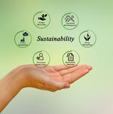Sustainability. Presenting important components of Sustainability Royalty Free Stock Photography
