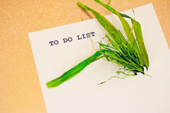 Sustainability taking over business to do list Royalty Free Stock Image