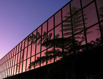 Sustainable Building. Modern office block with palm silhouette and pre dawn sky stock images