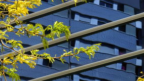 Sustainable city. stock video