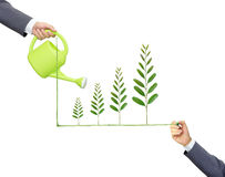 Sustainable development. Businessmen watering and writing green tree leaves arranged as a growing graph / csr / sustainable development / corporate social Stock Photography