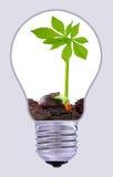 Sustainable development Stock Image