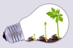 Sustainable development Royalty Free Stock Photo