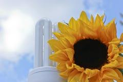 Sustainable green energy sunflower lightbulb Royalty Free Stock Photo
