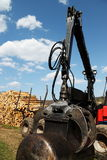 Sustainable Resources Logging Industry Stock Images